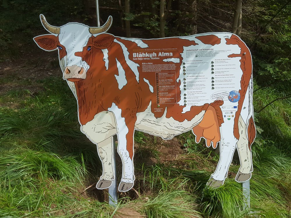 2018 Naturpark Mürzer Oberland – Blähkuh Alma © Winter Artservice