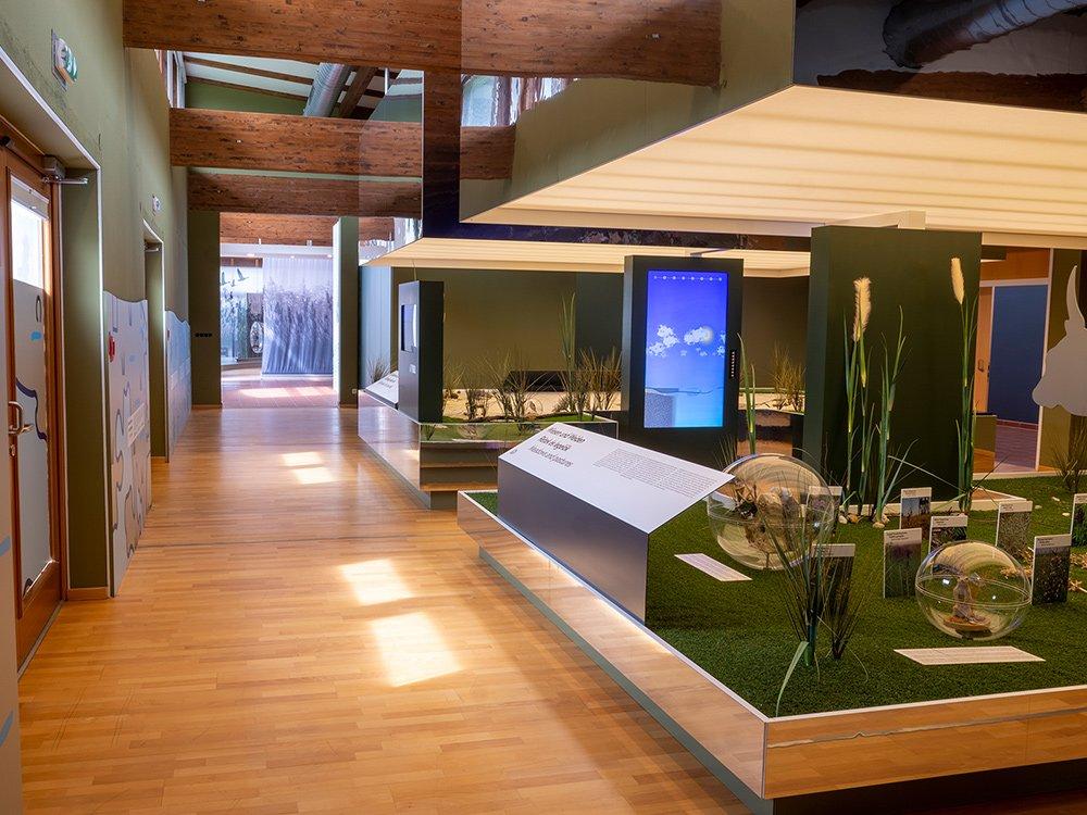 2020 – Infozentrum Welterbe Neusiedlersee – Illmitz © www.prospera.at